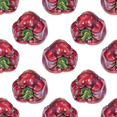 Seamless pattern with red peppers drawn by hand with colored pencil. Healthy vegan food. Fresh tasty vegetables painted from nature Stock Photo