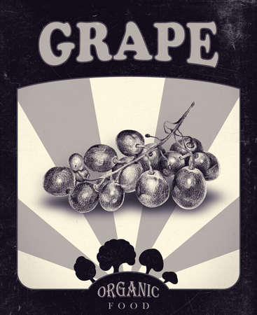 vitamine: Flyer with grape drawn by hand with pencil. Retro design. Drawing with crayons. Fresh tasty berry painted from nature. Tinted black and white