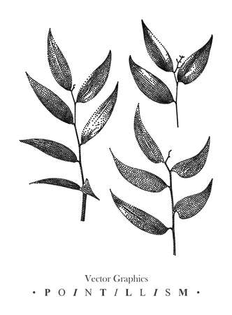 Vector illustration with set of branches and leaves drawn by hand. Graphic drawing, pointillism technique. Botanical natural collection. Black and white floral element for design.