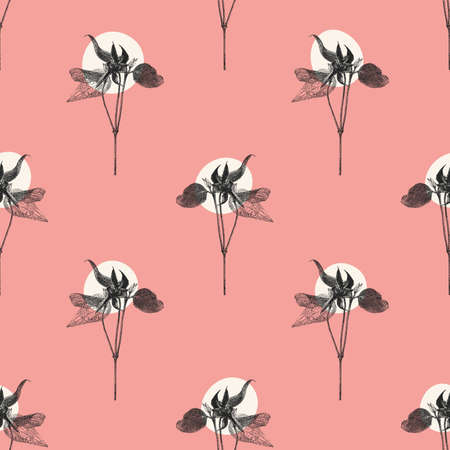 Vector seamless pattern with Clematis flower isolated on pink background. Graphic drawing, pointillism technique. Botanical natural collection. Floral illustration drawn by hand