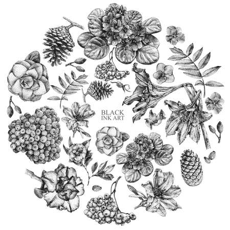 Set of different spring flowers and plants drawn by hand with black ink. 