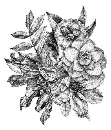 Composition of different flowers and plants drawn by hand with black ink. Graphic drawing, pointillism technique. Floral bouquet, ikebana