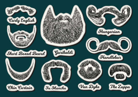Set of vector stickers with beards and mustaches. Hand drawn illustration with fashionable men's styles. Linear Graphics. Kinds and names of hairstyles
