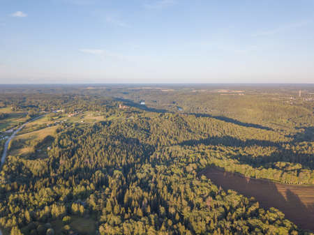 Aerial view of beautiful green forest, Latvia