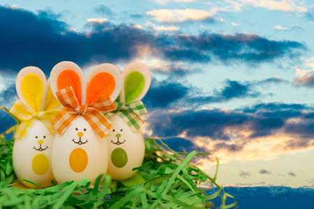 Decorated easter eggs, three bunnies on grass over blue sky sunset cloudy evening background. Happy Easter.