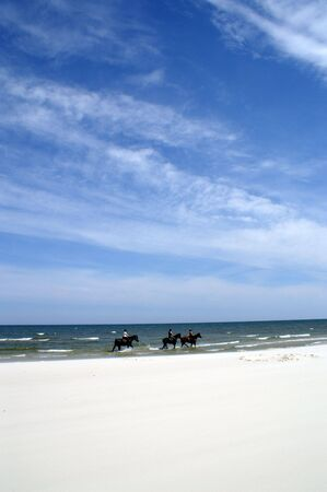briny: Riding after beach horseback and in sea