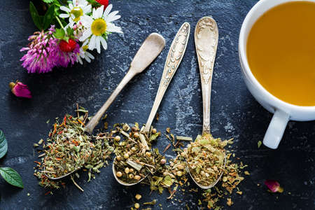 Dry herbal tea in tea spoons assortment and cup of green tea Stock Photo