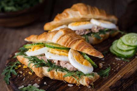 Tuna salad sandwiches with fresh cucumber, hard boiled egg and arugula. Closeup view, selective focus Standard-Bild