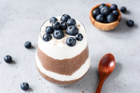 Chia pudding parfait with yogurt, blueberries and chocolate in a glass on concrete background. Selective focus. Healthy eating, dieting, healthy lifestyle concept