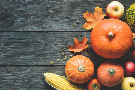 Autumn Background With Pumpkins, Fallen Maple Leaf, Corn On Wooden Planks. Copy Space For Text. Concept Of Thanksgiving Day Background, Halloween Background, Fall Harvest