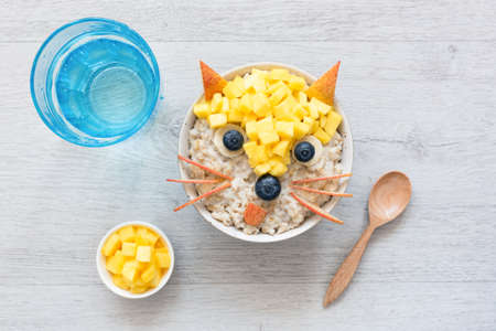 Healthy Funny Cute Breakfast For Kids. Oatmeal Porridge Decorated As Fox With Fruits Berries. Food Art. Creative Food Idea For Children