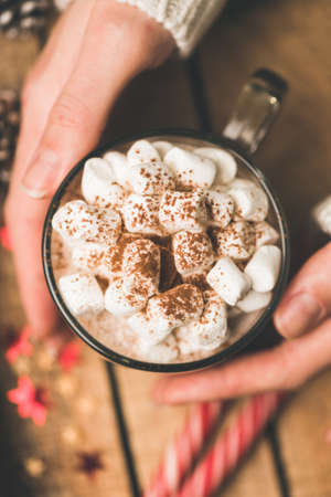 Hands holding mug of hot chocolate with marshmallows dusted with cinnamon. Top view, selective focus. Winter holidays, Christmas or New Year comfort food cozy warm drink Stock Photo