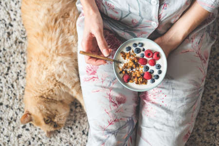 Eating yogurt with granola and berries. Female eating healthy breakfast with fluffy ginger exotic cat laying aside. Top view, concept of healthy eating, healthy lifestyle, lazy morning routine