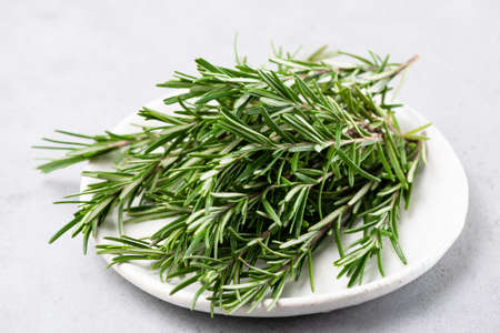 Fresh rosemary herbs closeup view. Isolated on white background