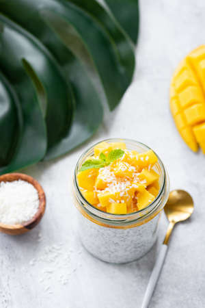 Yogurt Mango Chia Seed Pudding With Coconut Flakes Reklamní fotografie
