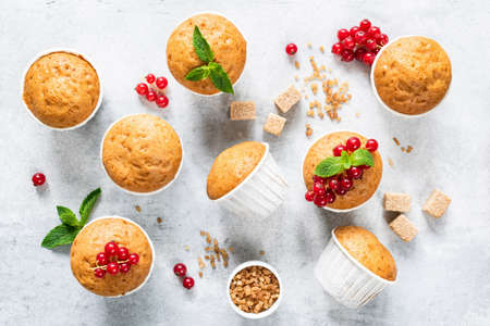 Vegan homemade muffins decorated with red berries and mint leaf on bright grey concrete Reklamní fotografie