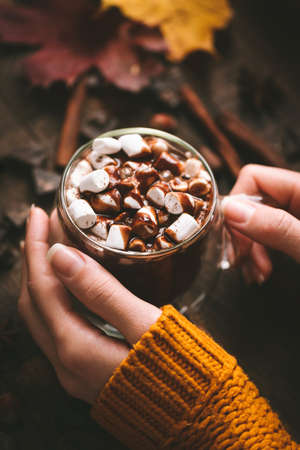 Hot Chocolate Mug In Female Hands. Autumn Winter Comfort Food Concept. Vertical Composition. Cozy Warm Image Of Holidays Stock fotó