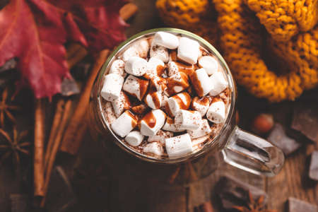 Mug of hot chocolate with marshmallows topped with chocolate sauce and cinnamon. Cozy warm drink, autumn comfort food. Top view, toned image Reklamní fotografie