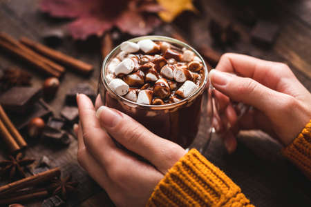 Female Hands Holding Cup Of Hot Chocolate With Cinnamon.
