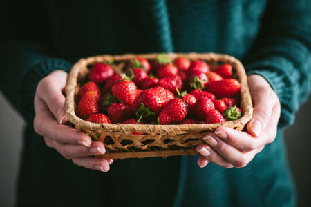 Farmer woman holding organic strawberries in basket. Home grown organic strawberries, summer berry harvest Banque d'images
