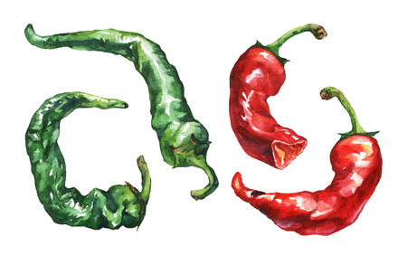 Hot pepper. Hand drawn watercolor painting on white background. Stock Photo