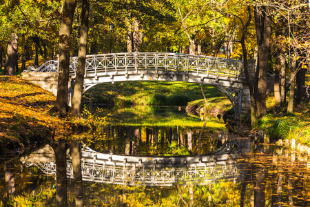 Indian summer in Russia. Beautiful and sad time in Gatchina Park. Фото со стока