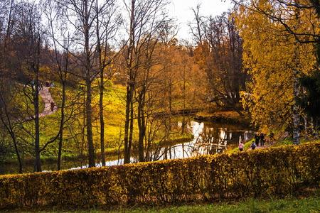Slavyanka river in the picturesque Pavlovsk Park.
