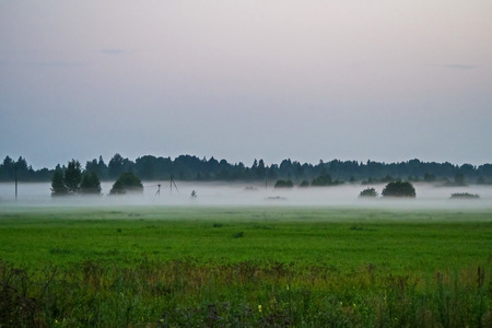 Morning fog in the fields of Leningrad region. Фото со стока