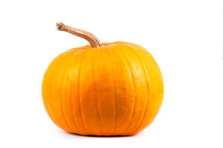 Pumpkin isolated on white background Standard-Bild