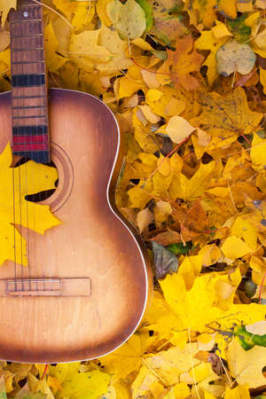 Guitar in autumn leaves. Autumn composition