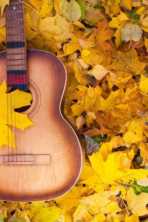 Guitar in autumn leaves. Autumn composition