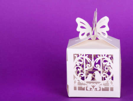 enclose: White decor cage isolated on violet background