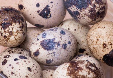 huevos de codorniz: huevos de codorniz, fotograma completo Foto de archivo