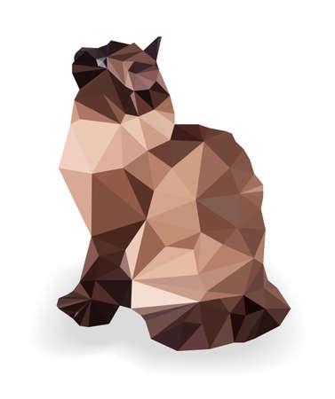 Low poly cat. Triangle polygonal stile siamese kitten. Flat design creative illustration. Modern logo animal. Vector illustration.