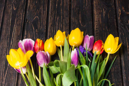 green background: Bouquet tulip on wood background