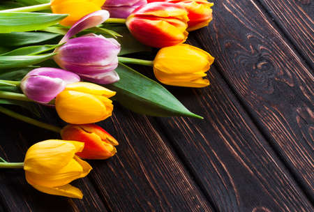 felicitaciones cumplea�os: Bouquet tulip on wood background
