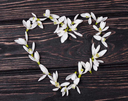 snowdrops: Floral heart with snowdrops on wood background Stock Photo