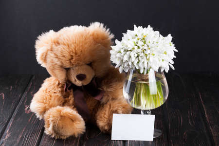 Bouquet Of Snowdrops In Vase And Teddy Bear On Wooden Boards Stock