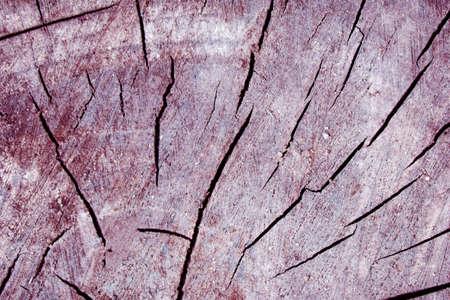 rundown: Designed scratch grunge paper texture, scratch background Stock Photo