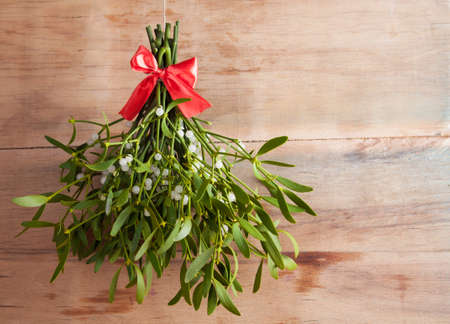 Broom from green mistletoe on wood desk. Nature background. Christmas plant