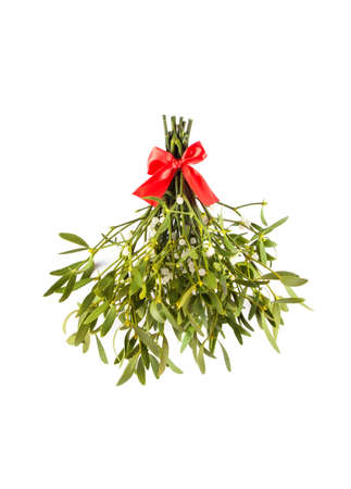 Broom from green mistletoe isolated on white background. Nature background. Christmas plant Archivio Fotografico