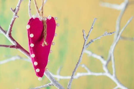 Heart from clothing on wood branch. Valentines day. International Womens Day