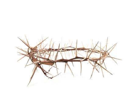 Crown of thorns isolated on white background Reklamní fotografie