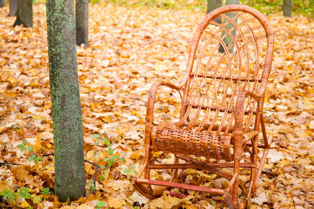 Rocking chair from the vine outdoor. Nature background Imagens