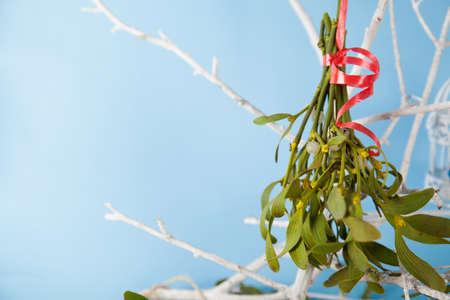 Green mistletoe close up and wood figure
