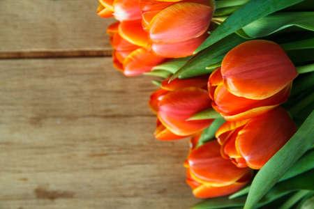 Orange tulip on wood desk. Spring flower. Nature background Stock Photo