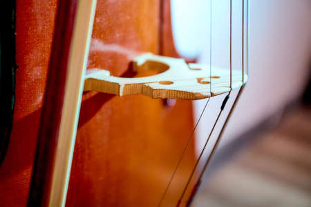 Close up old retro cello. Music background