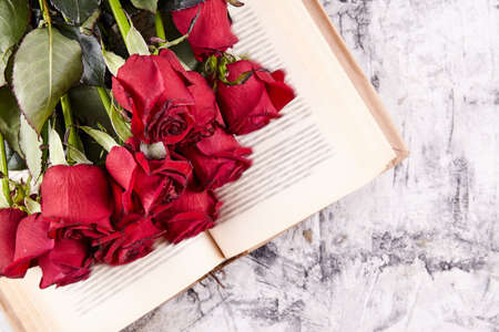 Red roses on background. Greeting card. Calendar Stock Photo