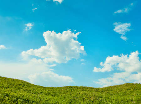 Blue sky with green grass. Nature background