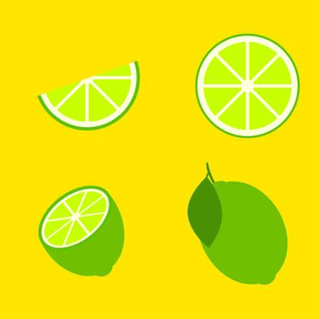 Vector lime slice green illustration lemon isolated half fruit lime. Fresh green cut citrus icon.
